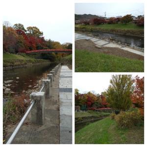 竜田川の紅葉の画像がまだあった…。