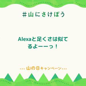 Alexaへ…