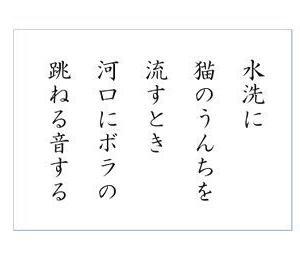 ☆ 猫のうんち