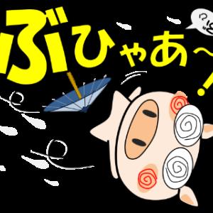 台風の為お休みさせていただきます。