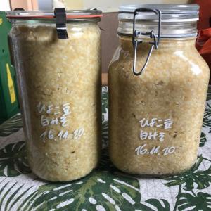 ひよこ豆で白味噌作り