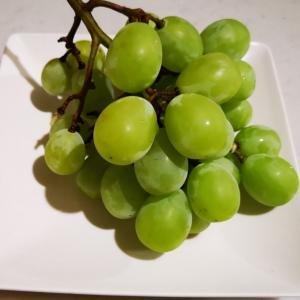 最後のブドウ