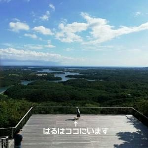三重県の旅③横山天空カフェテラス