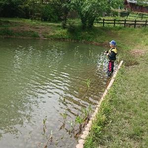 釣れない野池の戦い