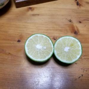 スイートレモン