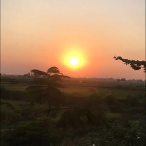 印度放浪記 ガンジャとカレーと深夜バスの旅8