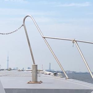 東京湾から眺めるスカイツリーは正に非日常の光景!