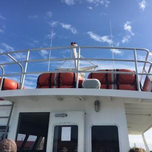 4時間耐えた船酔いの旅。