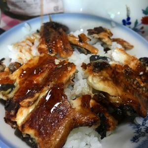 安いうなぎでも十分満足の仕上げに。 ふっくら鰻とパリッと鰻の二層うな丼 簡単レシピ付き