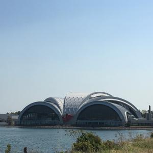 今日は世界保健デー、辰巳国際水泳場