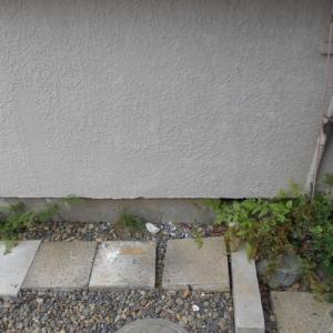 排水管のやり替え工事・・・千葉市