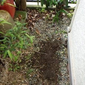水道あるある・・・水道管の水漏れ修理とガス管