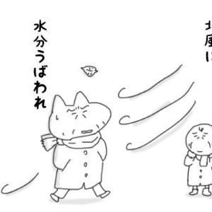 中高年のための酵素洗顔☆ミノン/アミノモイスト クリアウォッシュパウダー