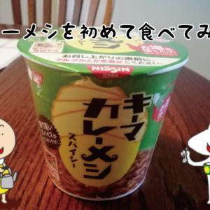 日清「カレーメシ」初めて食べました♪