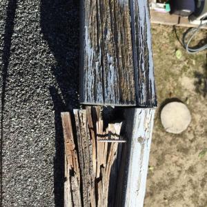 台風の爪跡と小屋修復