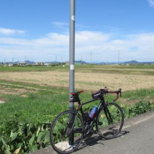 自転車乗りはアンチエイジング