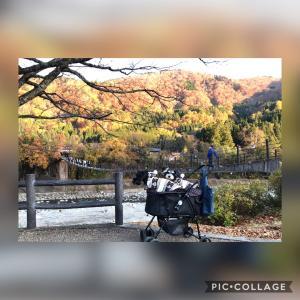 さすこて旅~岐阜高山③