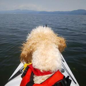 【Oru Kayak】水上散歩+再乗艇プラクティス再び。【なかなか良いかも】