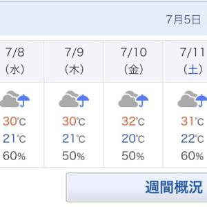 [萎える]雨ばっか。