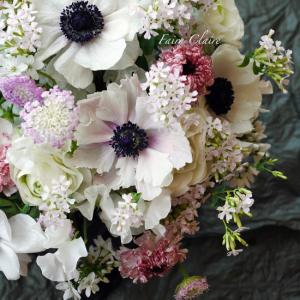 春のお花とお知らせ
