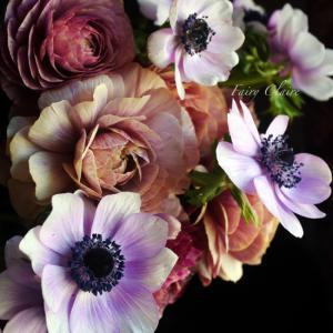 春のお花♡