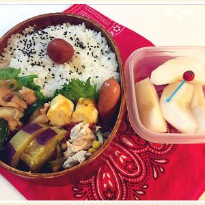 豚肉とピーマンのオイスター炒め弁当と男子バレー素晴らしい!!