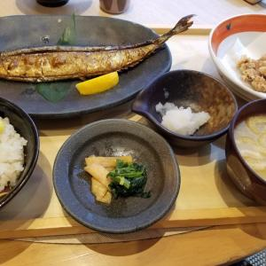 やっと秋刀魚食べられた!
