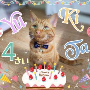 Happy 4th birthday 🎉