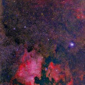 デネブ周辺の赤い星雲