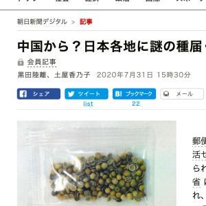 要注意!中国から謎の郵便物