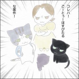 あずき_03