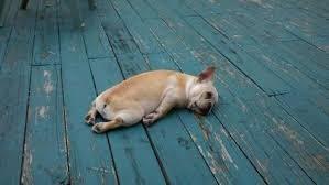 また疲れてきた。