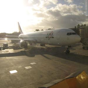 JALの成田ーホノルル便の機内に忘れ物をするとどうなるか~その忘れたものとは?