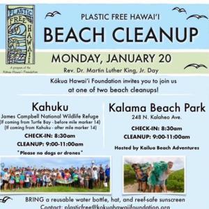 1/20(日曜)カイルアのカラマビーチでビーチクリーンを開催します~プラスティックの漂着の現状をぜひご覧ください