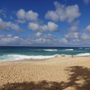 ハワイの観光再開の目途は?~副知事が早期再開を予想