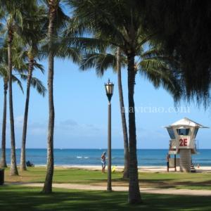 ハワイでのコロナウィルス感染者報告~8/2は「207人」