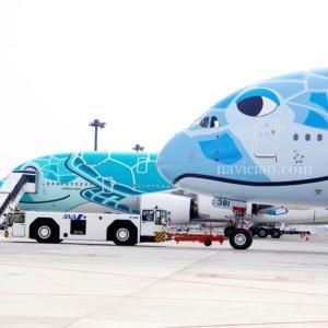 【フライングホヌが北海道と沖縄を飛びます!】今回の「ANA フライングホヌ」チャーターフライト は見逃せない!