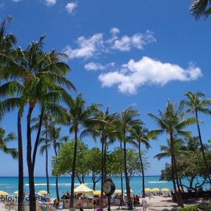 感染者数が激増した今週末のハワイ~グリーン副知事までもが懸念を表明