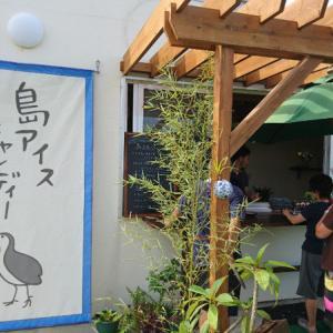 島アイス タマトゥリー商店☆スムージーとアイスキャンディーのお店です!