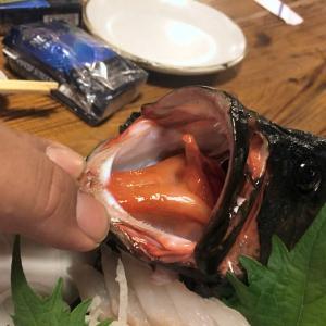 石垣島旅行☆釣りのあとのお楽しみ!釣ったおさかなをおいしくいただきます