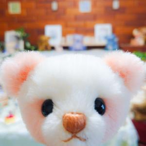桜染めパンダさん お顔が完成!