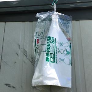レジ袋有料化と頭脳警察の思い出 因果関係無しw