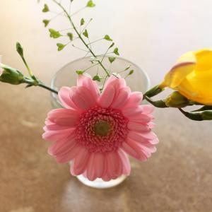 花束500円の定期便メリット・デメリット|Bloomee LIFE 4回目の正直