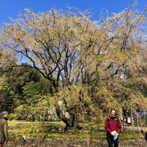 モモレジの名作マンション訪問【2019Vol.1】