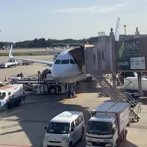 セントレアから成田までANAの国際線機材に乗った。