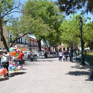 メキシコ生活ふり返り 「学び」は人生をより豊かに、自由にするよ*