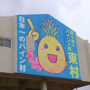【2020年7月】沖縄「道の駅 サンライズひがし」で旬な国産パインアップルを買ってみた!