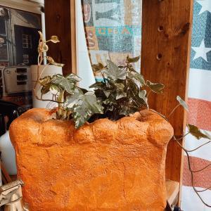 緑の癒し&アメリカン雑貨の模様替え