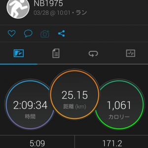 3/28(土)『ジャパン・パラドクス』コロナの致死率