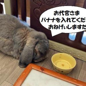 間違えた(^_^;)